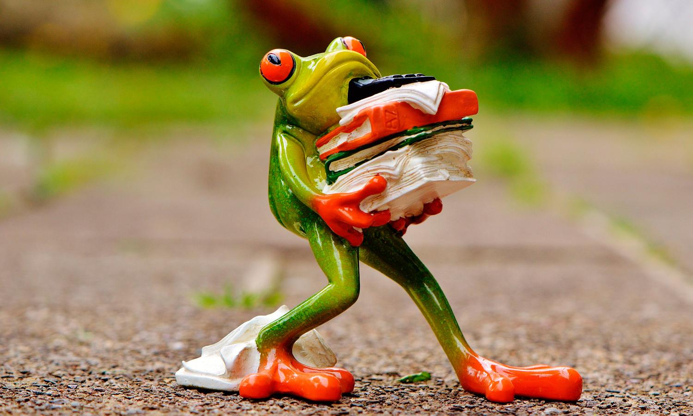 frog-1339916_FFU_web