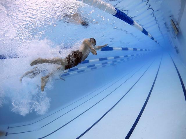 swimmers-79592_FFU_web