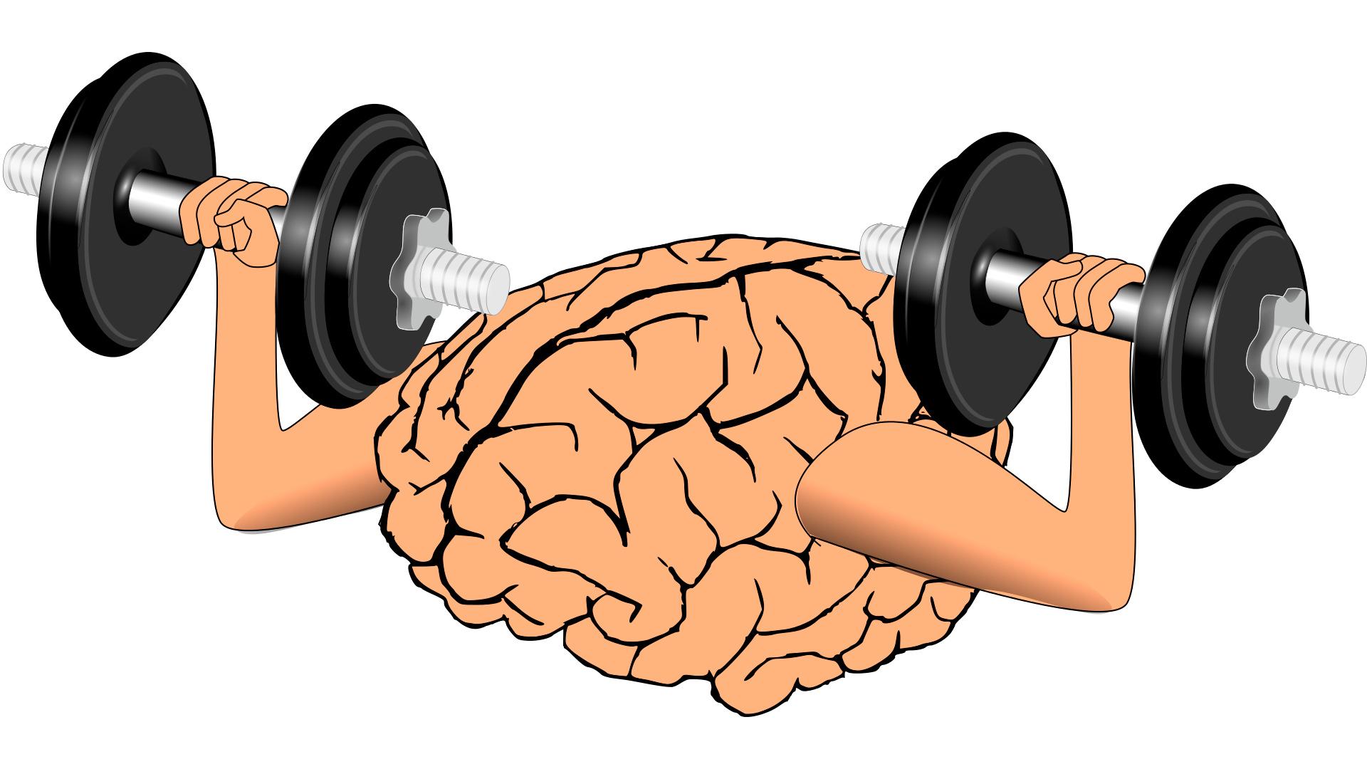 brain-1295128_FFU_web